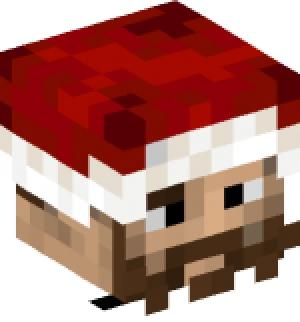 Christmas Minecraft Santa.Christmas Cap